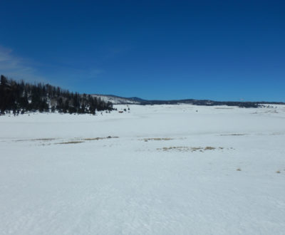Crescent Lake will likely winterkill.