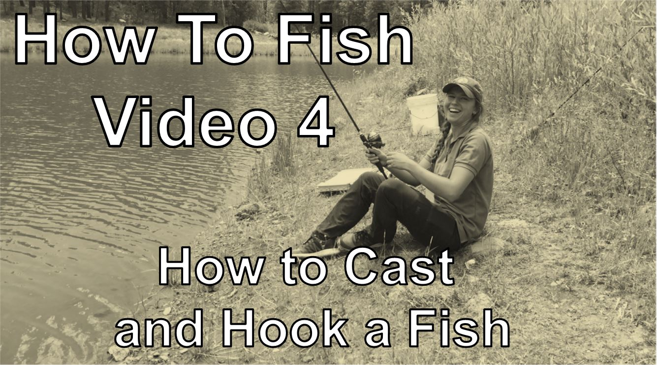 Learn to fish video 4 fish az for Learn to fish