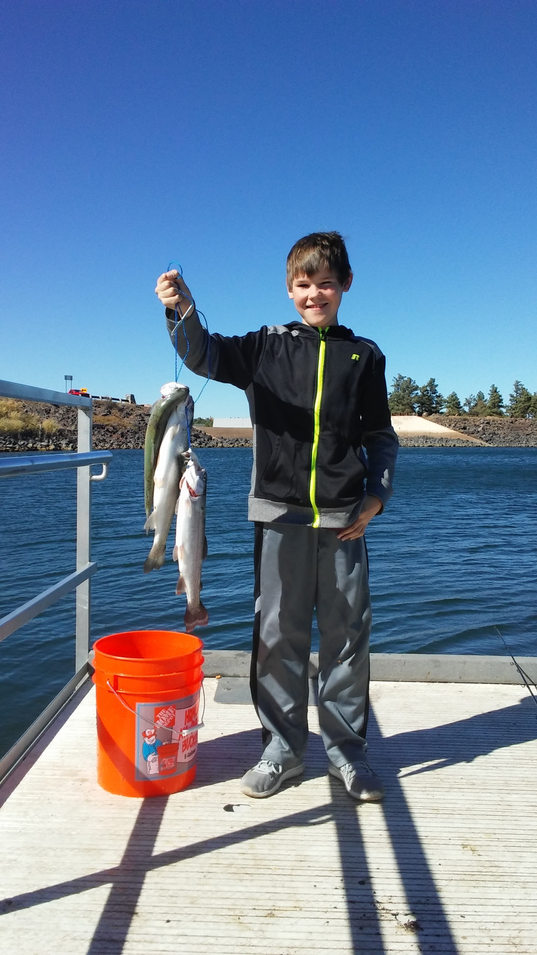 Show low lake lunkers fish az for Fishing in williams az