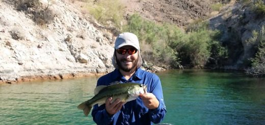 Fish AZ — Page 16 of 104 — Fishing Reports, News, and