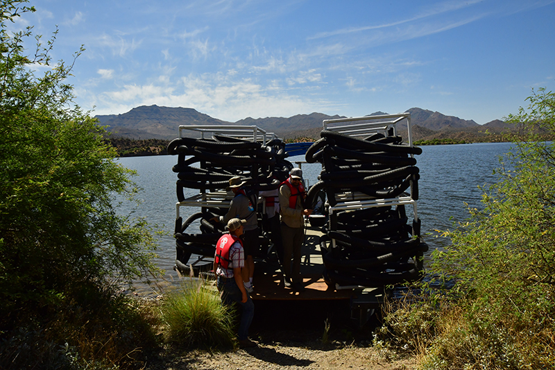 Check out the updated trout stocking schedule — Fish AZ