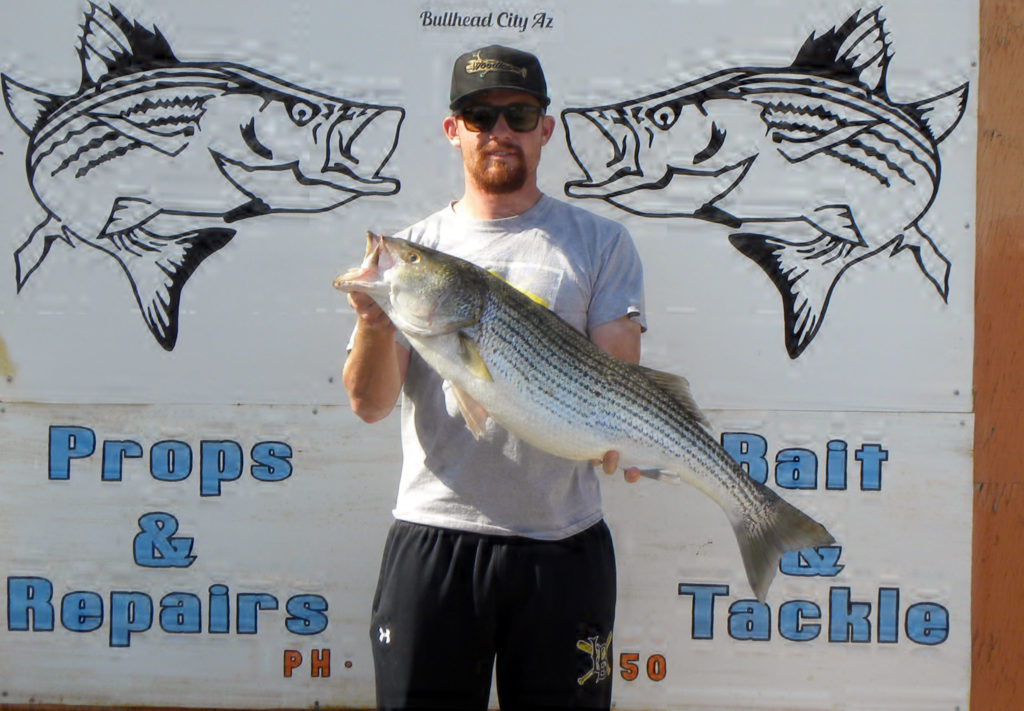 Josh Advovate, a Mohave Valley-born, Texas Rangers-affiliate pitcher, landed this 17-pound striper. Advocate currently pitches for the Class-A Advanced Down East Wood Ducks in the Carolina League and in 2019 pitched 75 innings with a 2.64 ERA and 77 strikeouts.